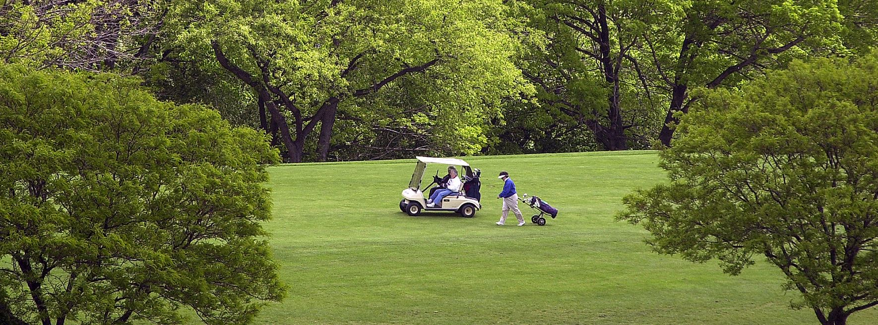 Mt. Lebanon golf course